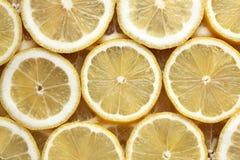 den bakgrund isolerade citronen skivar white Royaltyfri Fotografi