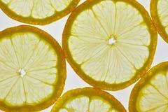 den bakgrund isolerade citronen skivar white Fotografering för Bildbyråer
