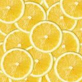 den bakgrund isolerade citronen skivar white Arkivbild