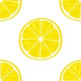 den bakgrund isolerade citronen skivar white modell Royaltyfria Foton
