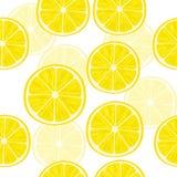 den bakgrund isolerade citronen skivar white modell Arkivfoton