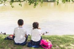 den bakre sikten av skolbarn som sitter på sjöbanken och matar, duckar arkivbild