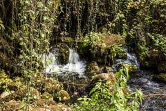 Den Banias vattenfallet och parkerar arkivfoto