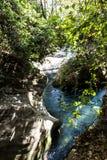 Den Banias vattenfallet och parkerar arkivfoton
