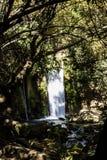Den Banias vattenfallet och parkerar royaltyfri foto