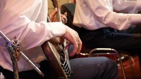 Den bas- gitarristen bor i konsert stock video