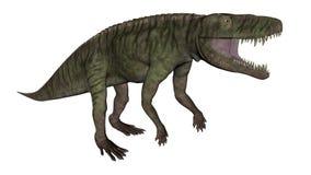 Den Batrachotomus dinosaurien som vrålar -3D, framför vektor illustrationer