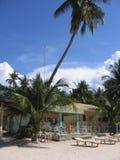den beachside cafen gömma i handflatan sabangtreen Royaltyfri Foto