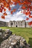 Den Beaumaris slotten i Anglesey, norr Wales, Förenade kungariket, serie av Walesh rockerar Arkivbilder
