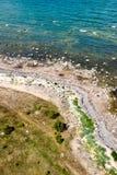 Den bekväma stranden av det baltiska havet med vaggar och grön vegetat Arkivbilder