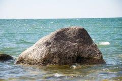 Den bekväma stranden av det baltiska havet med vaggar och grön vegetat Royaltyfri Bild