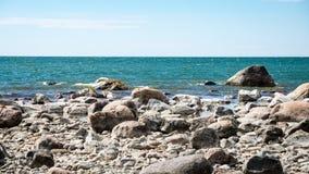 Den bekväma stranden av det baltiska havet med vaggar och grön vegetat Royaltyfri Foto