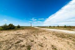 Den bekväma stranden av det baltiska havet med vaggar och grön vegetat Arkivfoto