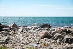 Den bekväma stranden av det baltiska havet med vaggar och grön vegetat Arkivfoton