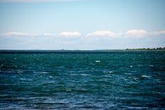Den bekväma stranden av det baltiska havet med vaggar och grön vegetat Arkivbild