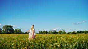 Den bekymmerslösa flickan i en rosa klänning stöter ihop med fältet med gula blommor Steadicam ultrarapidskott stock video