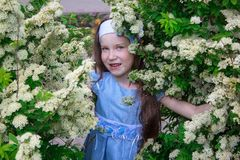 Den bekymmerslösa lilla flickan står i busken av en hägg Royaltyfri Bild