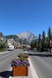 Den berömda Banff avenyn i den Banff nationalparken Royaltyfri Foto