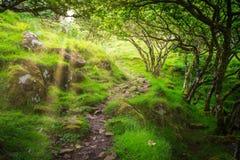 Den berömda felika dalgången som lokaliseras i kullarna ovanför byn av Uig på ön av Skye i Skottland Arkivbilder