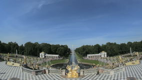 Den berömda stora springbrunnen Peterhof, St Petersburg, Ryssland arkivfilmer