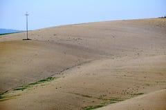 Den berömda Tuscan Kreta Senesi Arkivfoto