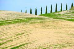 Den berömda Tuscan Kreta Senesi Arkivbild