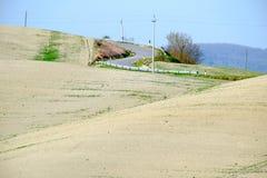 Den berömda Tuscan Kreta Senesi Royaltyfria Foton