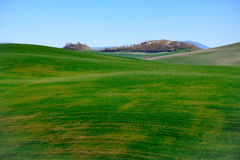 Den berömda Tuscan Kreta Senesi Arkivbilder