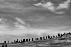 Den berömda Tuscan Kreta Senesi i svartvitt Arkivfoton