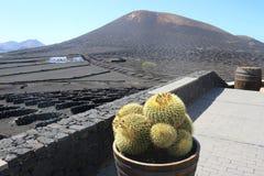Den berömda vinranka-växande områdeslaen Geria på Lanzarote Royaltyfria Bilder