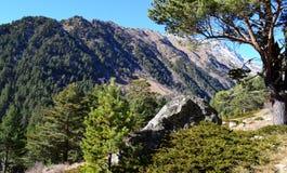 In den Bergen des Kaukasus Stockbild