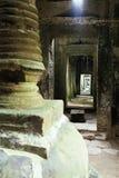 den bevuxna angkorcambodia khmeren fördärvar wat Royaltyfri Foto
