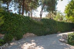 Den bevuxna väggen, natur tar dess Gräsplan kommer arkivfoto