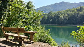 Den Biogradsko jezeroen, Montenegro, vilar område Royaltyfri Foto