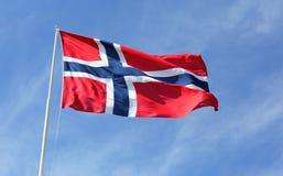 den blåa flaggan gjorde norsk röd vektorwhite Arkivfoton