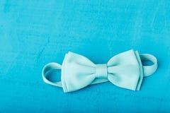 Den blåa flugan Royaltyfria Bilder