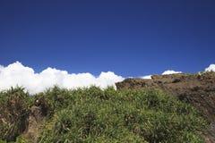 Den blåa himlen i ön Royaltyfria Foton