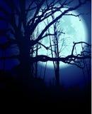 Den blåa natten Arkivfoto