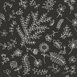 Den blom- prydnaden skissar, seamless bakgrund 免版税库存图片