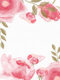 den blom- ramen inramniner serie Royaltyfria Foton