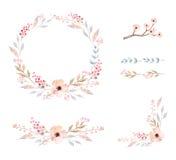 den blom- ramen inramniner serie Uppsättning av gulliga vattenfärgblommor Royaltyfri Fotografi