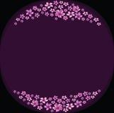 Den blom- ramen med violeten blommar på mörk violett bakgrund Royaltyfri Foto