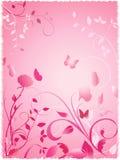 den blom- trädgårds- pinken steg Arkivbild