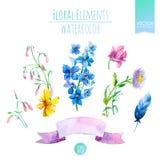 Den blom- uppsättningen med vattenfärgen blommar för sommar- eller vårkort, inbjudningar, reklamblad, baner eller affischdesign v Royaltyfri Fotografi
