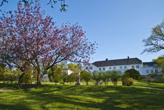 den blomma trädgårds- herrgården kan red Fotografering för Bildbyråer