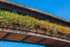 den blommiga balkongen av den Forst slotten, Bolzano, södra Tyrol, Italien fotografering för bildbyråer