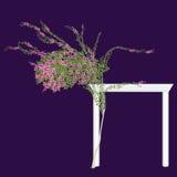 Den blomstra bougainvillean Arkivfoton