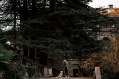Den blonda flickan i kall jeans klår upp anseende i parkerar med hennes hund arkivfoto