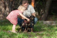 Den blonda flickan meddelar med två terrier, fadern Arkivbilder