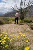 Den blonda kvinnan står posera bredvid en Ocotillokaktusväxt i Anza Borrego ökendelstatspark i Kalifornien arkivbild